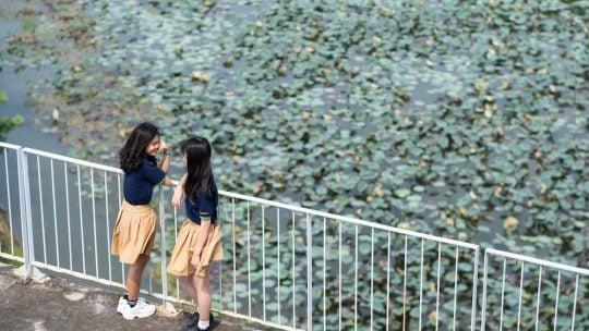 THPT_FPT_Mua dong Hoa lac4